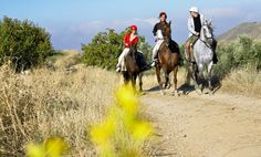 60-Minute Horseback Trail Riding for One, Two, or Four at Pure Horse Play (Up to 58% Off)