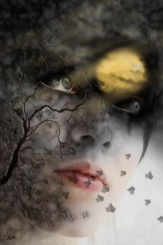 """wolfdancer: Season of the Witch  """"To me, a witch is a woman that is capable of letting her intuition take hold of her actions, that communes with her environment, that isn't afraid of facing challenges.""""   ~Paulo Coelho"""