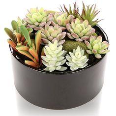 mygift 6 inch realistic artificial faux mixed succulent plants arrangement w black round ceramic