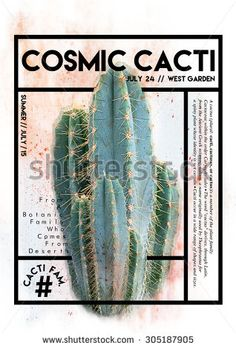 Cactus graphic with text and frame on it - stock photo