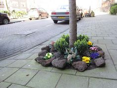 Let's all do this, think of how great the streets would look! :-)