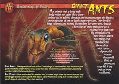 These aren't Picnic Ants Giant Animals, Big Animals, Prehistoric World, Prehistoric Animals, Creepy Facts, Wtf Fun Facts, Names Of Dinosaurs, Wild Creatures, Strange Creatures