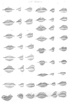 Study of different mouth/lip shapes. Note: see here: for larger scans.