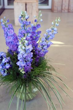 #treefern #delphinium #blue #tgrass #variegated #bouquet #inspiration #love #season #flowers #foliage #greens #leaves #trends #style #summer Tree Fern, Delphinium, Style Summer, Asparagus, Floral Design, Bouquet, Design Inspiration, Leaves, Seasons