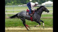 Monarchos.2001 Kentucky Derby Winner.