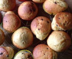 Rezept Apfelmus - Muffins mit Schokotropfen von Helusi - Rezept der Kategorie Backen süß