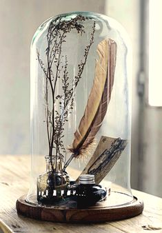 This is such a lovely way to use a cloche. I love little vignettes such as these.