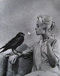 Les oiseaux, Philip Halsman