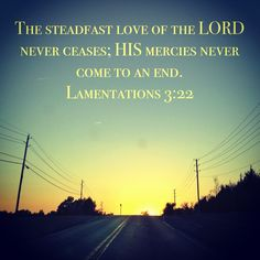 Lamentations 3:22 Lamentations 3 22, Saved By Grace, Bible Quotes, Wisdom, Words, Spring, Outdoor, Bible Scripture Quotes, Outdoors