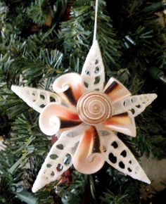 Snowflake Ornament with sun dial shell by OceanBlooms on Etsy, $15.00