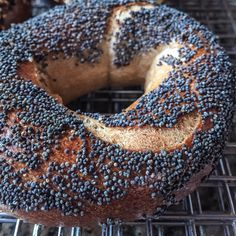 Few things in this world are better than a sourdough bagel. Want to know how to make them at home?