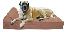 Big Barker 7 Pillow Top Orthopedic Dog Bed  XL Size  52 X 36 X 7  Khaki  For Large and Extra Large Breed Dogs Headrest Edition * Read more  at the image link.