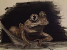 'Croaks' charcoal art by 'frogster'