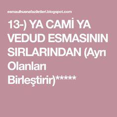 13-) YA CAMİ YA VEDUD ESMASININ SIRLARINDAN (Ayrı Olanları Birleştirir)*****