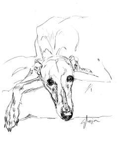 Greyhound Tattoo, Greyhound Art, Art Drawings Sketches, Animal Drawings, Dog Face Drawing, Illustrations, Illustration Art, Dog Artist, Dog Artwork