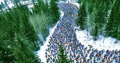 Varying dates - Vasaloppet in Sweden (largest cross-country ski race in the world) Holidays Around The World, Around The Worlds, February Holidays, Ski Racing, March 3rd, Cross Country Skiing, Long Distance, Alaska, Sweden