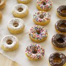 Try the Mini Donuts Recipe on williams-sonoma.com......THIS IS THE BEST RECIPE FOR MINI DONUTS SO FAR!! Yummy :)