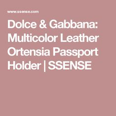 Dolce & Gabbana: Multicolor Leather Ortensia Passport Holder | SSENSE