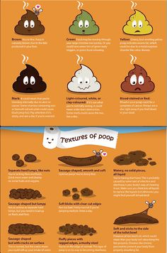 On a grosser note, a poop chart.  Helps you identify what is going on in your GI tract.