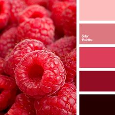 Color Palette #3662 | Color Palette Ideas | Bloglovin'