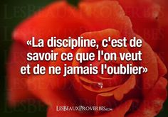 Citations De Discipline sur Pinterest | Citations Sur La Maîtrise De ...