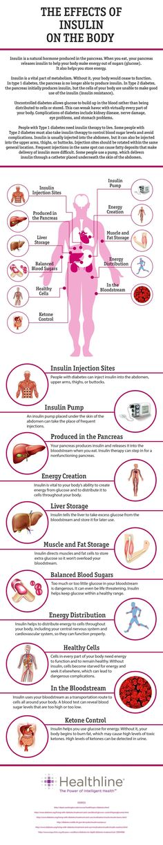 The Effects of Insulin on the Body
