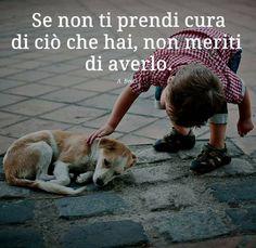 Un animale cambia la vita delle persone che hanno la sensibilità per apprezzare le gioie quotidiane che comporta...e non tutti si meritano di averlo! - francesca p. - Google+