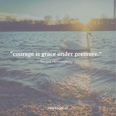 and to those graceful beings... i thank you, those before you, and those to come. our stories need to be spoken, so the light can enter and heal. not just for those that have the courage to speak, but for those that couldn't, and may have to, so they can be inspired by, and healed through.