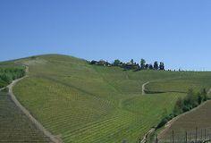 Tour delle Langhe, nuovo Patrimonio dell'Umanità dell'Unesco. Foto