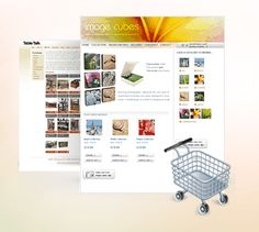 23 WordPress E-commerce Plugins To Set Up Online Store