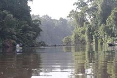 Canoeing through Tortuguero National Park - Tortuguero National Park, Limon