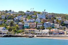 Catalina Island~I loved the week I spent there in the 8th grade