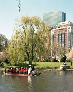 Since the 1870s, the swan boats in Boston's Public Garden have given rides around the lagoon from spring through early fall.