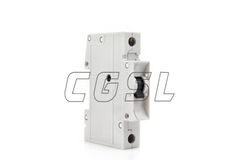 Miniature Circuit Breaker 5SX2