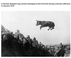 Interesting photos throughout history (24 Photos)