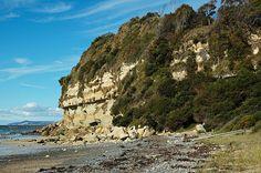 Fossil-Bluff