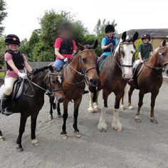 Own a Pony days have been very popular this summer. Here is a picture of today's group who had just returned from their hack in Bushy Park. They spent the morning grooming and plaiting their ponies