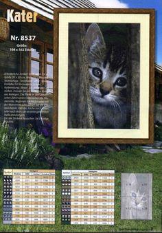 Gallery.ru / Фото #5 - 209 - markisa81