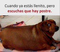 #Jajajaja #chiste #risa #humor #diverticosas