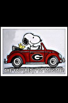 Aww, Snoopy and Woodstock are Dawgs fans! Go Dawgs!