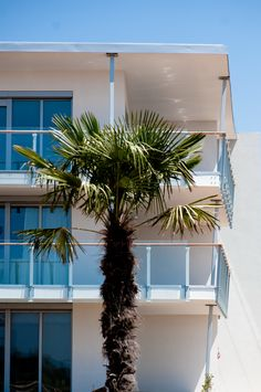 At Falkensteiner Premium Apartments Senia your dreams will become reality. Enjoy luxury apartments directly by the beach in Croatia. Mediterranean Architecture, Luxury Apartments, Croatia, Places To See, Plants, Travel, Paradise, Vacation, Viajes