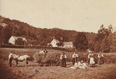 Lokalhistorisk biletsamling i Tysnes: Høyonn i Anne Knutsdotter-land
