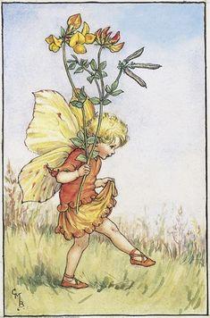 Cicely Mary Barker - Flower Fairies of the Summer (Bird's Foot Trefoil)
