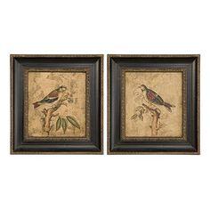 Uttermost 2-pc. Colorful Birds on Branch Framed Wall Art Set