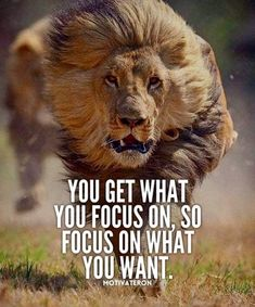 Yoga Quotes : Motivational Quotes 377 Motivational Inspirational Quotes for success 101 Source by karpyszyn Short Inspirational Quotes, Great Quotes, Small Motivational Quotes, Quotes For Men, Motivational Message, Lion Quotes, Warrior Quotes, Badass Quotes, Success Quotes