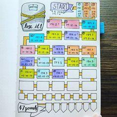 Menstrual cycle record