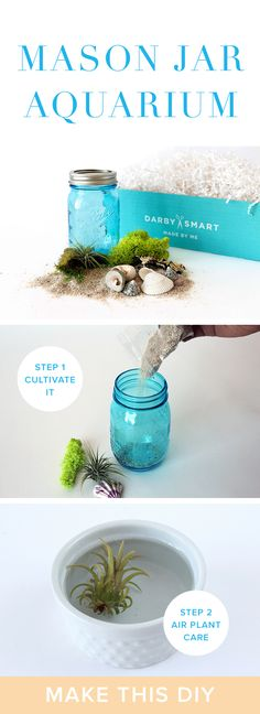 DIY Mason Jar Aquarium Project | Decor