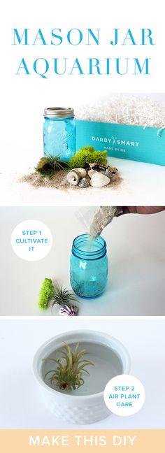 DIY Mason Jar Aquarium Project | Decor