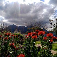 Best Cities, Mountains, World, City, Nature, Plants, Travel, The World, Naturaleza