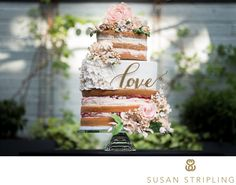cake from Susan Stripling Photography!
